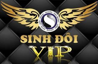 Karaoke Sinh Đôi V.I.P